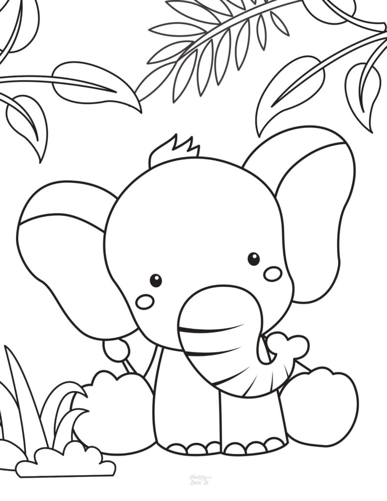 baby elephant pictures to print
